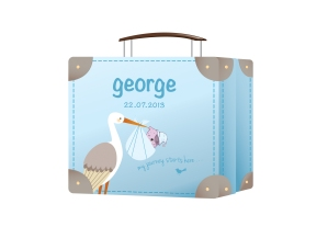 8793-GeorgeCase(Blue)